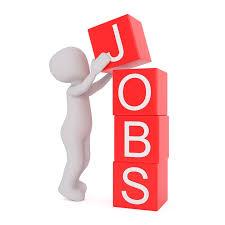 Offres d'emploi – 30 juin 2020